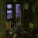 Живущая два года без электричества многодетная семья лишилась жилья из-за упавшей на пол свечи