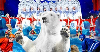 Цирк на льду «Айсберг»