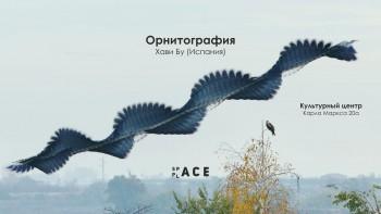 Открытие выставки «Орнитография»