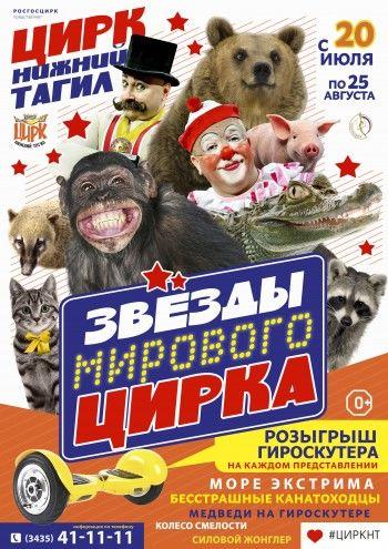 Цирковое представление «Звёзды мирового цирка»
