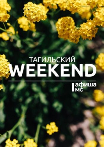 Тагильский weekend топ-14: пикник с марионетками, полёты во сне и наяву и повзрослевший Винни Пух