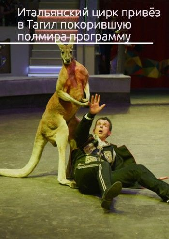 Тигры-гладиаторы и слонихи-балерины. Знаменитый итальянский цирк привёз в Нижний Тагил покорившую полмира программу