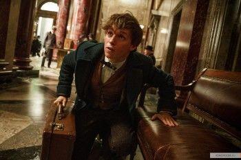 Джуд Лоу в образе Дамблдора. В сети появился первый трейлер «Фантастических тварей»