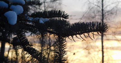 МЧС продлило предупреждение о морозах в Свердловской области