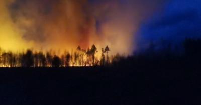 Под Екатеринбургом и Асбестом горят лесные массивы (ВИДЕО)