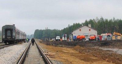 В Архангельске против пяти человек завели дела о неуважении к власти из-за комментариев о свалке в Шиесе
