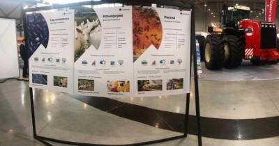 Специалисты туркластера «Гора Белая» рассказали об агротуризме на межрегиональном агропромышленном форуме