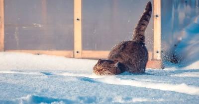 Потепление до минус четырёх градусов и снег ждут жителей Нижнего Тагила в эти выходные