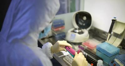 ВКитае вылечились почти 46% всех заразившихся коронавирусом