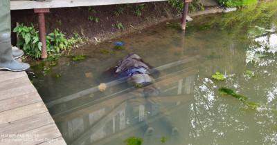 В Нижнем Тагиле утонул пенсионер