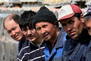 Свердловское правительство пообещало не заменять уральцев гастарбайтерами