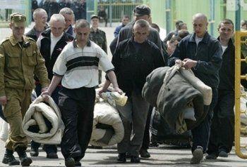 ЛДПР предложила амнистировать более 60 тысяч заключённых