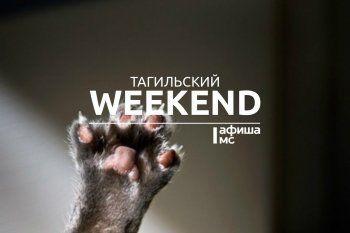 Тагильский weekend топ-12: Матильда, откровения бармена и «Тыквобум»