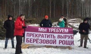 Жители Екатеринбурга потребовали остановить вырубку берёзовой рощи