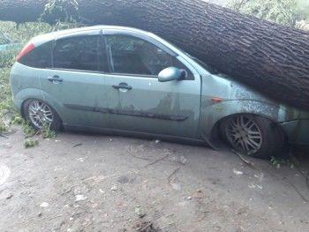 Жительница Нижнего Тагила отсудила у мэрии 70 тысяч рублей после падения столба на машину во время урагана