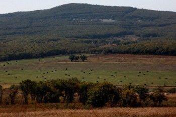 В России начал действовать закон о «дальневосточном гектаре»