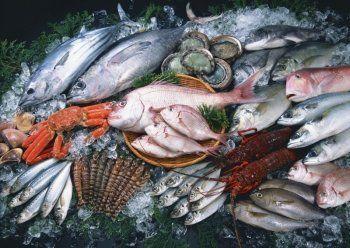 «Санкции добили отрасль». Нижнетагильский рыбный комбинат партнёры требуют признать банкротом