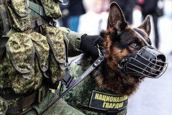 Неизвестный «заминировал» резиденцию губернатора и три министерства в Екатеринбурге