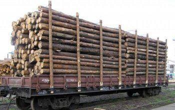 В Нижнем Тагиле осудили контрабандиста стратегически важных товаров