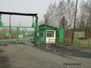 Сотрудник тагильской колонии открыл салон сотовой связи для заключённых и теперь сам может оказаться на зоне