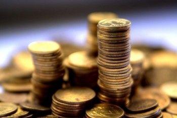 Многодетным семьям могут снизить подоходный налог
