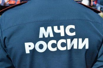 В Свердловской области двух сотрудников МЧС отправили в колонию за мошенничество