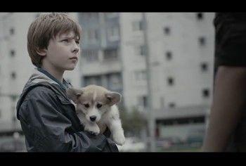 ФАС обвинила рекламу собачьего корма в призыве к насилию над детьми