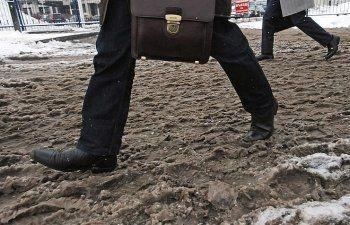 Мэрия Екатеринбурга потратит 1,8 млн рублей на изучение грязи в городе