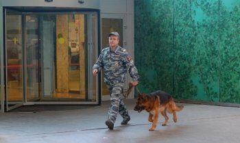 В Екатеринбурге идёт вторая «волна» эвакуации школ из-за лжеминёров