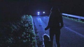 На освещение аварийной дороги в селе Николо-Павловское выделят 15,5 млн рублей
