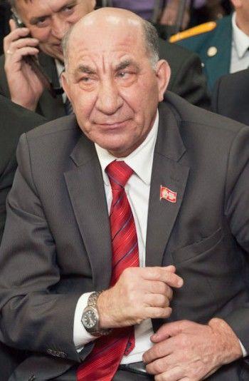 Владимир Радаев «против» Кривого Рога