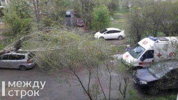 В Нижнем Тагиле автомобиль придавило упавшим от штормового ветра деревом. «Во двор не смогла заехать даже скорая» (ВИДЕО)