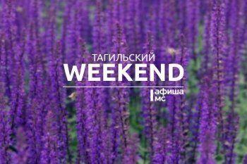 Тагильский weekend топ-10: последние «Чайные бега», съёмки в клубе и музыкальные контрабандисты