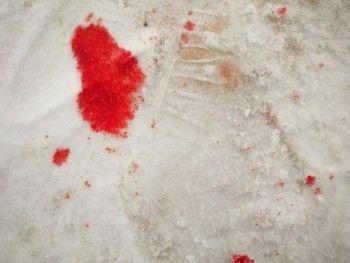 В Нижнем Тагиле рецидивист несколько месяцев прятал труп на садовом участке