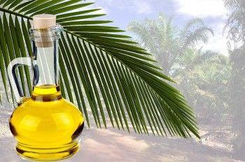 Минсельхоз решил не запрещать пальмовое масло