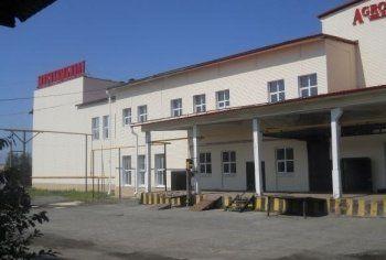 Недвижимость Нижнетагильского мясокомбината продали за бесценок
