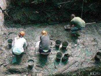 Под Нижним Тагилом нашли артефакты, которым 11 тысяч лет