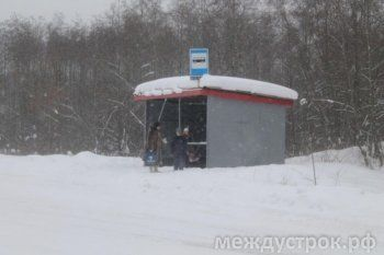 Жители Нижней Черемшанки не могут добраться до центра Нижнего Тагила. Единственный автобус подводит
