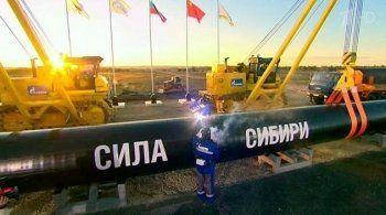Микропредприятие из Томска выиграло контракты по «Силе Сибири» на 8 млрд рублей