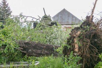 В Нижнем Тагиле начала работать горячая линия для пострадавших от урагана