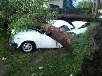 Что оставил после себя ураган в Нижнем Тагиле (ФОТО)