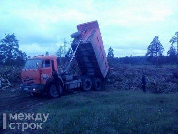 Жители Нижнего Тагила обнаружили возле кладбища незаконную свалку поваленных ураганом деревьев. В мэрии назвали это временной и вынужденной мерой