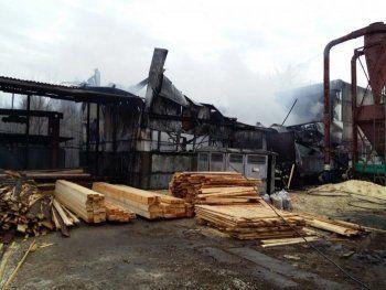 В Нижнем Тагиле сгорел деревообрабатывающий цех