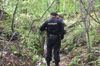 К поиску пропавшего пенсионера присоединятся 40 полицейских из Нижнего Тагила