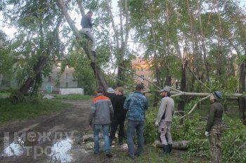 «Обращайтесь к Махе и Петровичу». Кто помогает Нижнему Тагилу после урагана не по службе, а от души