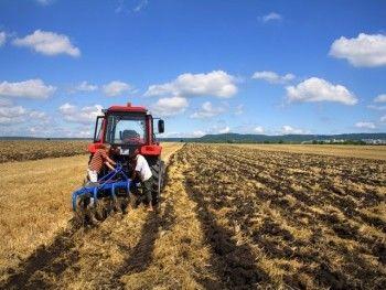 За переезд на Дальний Восток будут выдавать гектар земли
