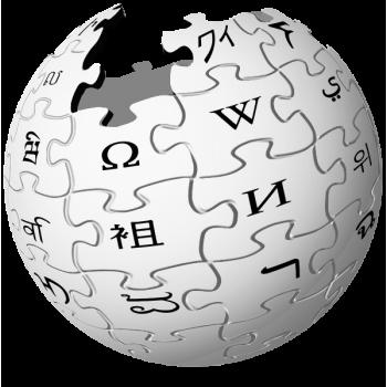 Замглавы Рособрнадзора предложил запретить «Википедию»