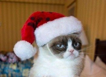 Новогодние праздники хотят опять сократить до четырёх дней