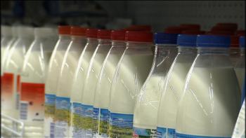 Определить свежесть молока поможет смартфон