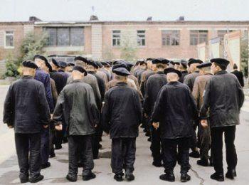 Сколько в Тагиле амнистированных?